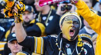 Pittsburgh Steelers Fan Guide, Heinz Field Fan Guide